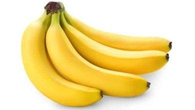 Photo of Ползата от банана
