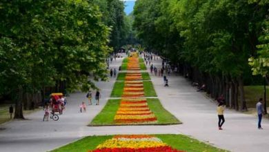 Photo of Безплатни онкологични прегледи във Варна